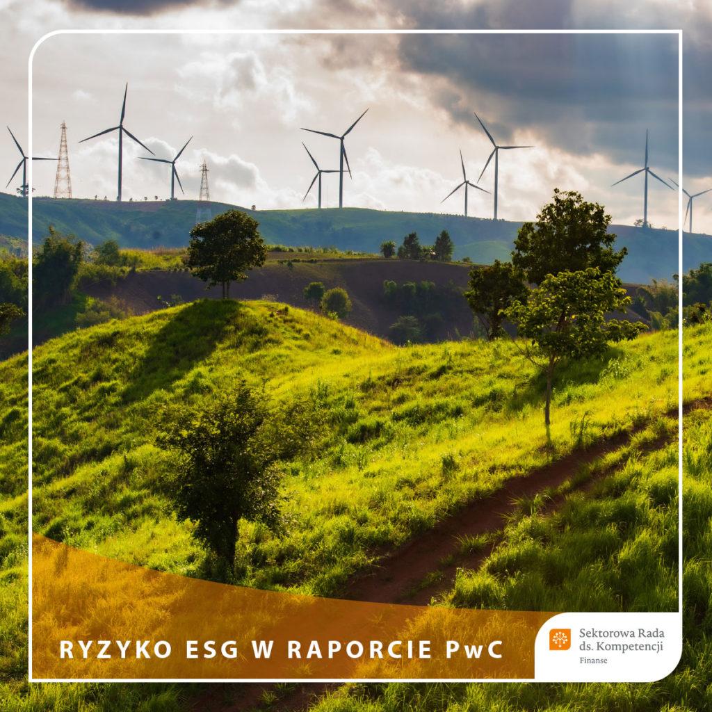 Raport - ESG - miecz Demoklesa czy szansa na strategiczną zmianę - PwC, FRN, CFA Society Poland, SN CRN - Ryzyko ESG w raporcie PwC